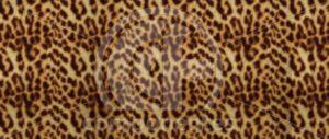 Animal-Print-SB-11.869