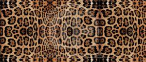Animal-Print-SB-11.889