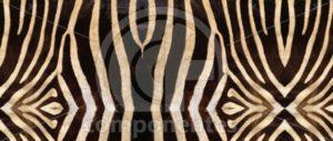 Animal-Print-SB-20.903
