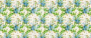 Florais-SB-12.689